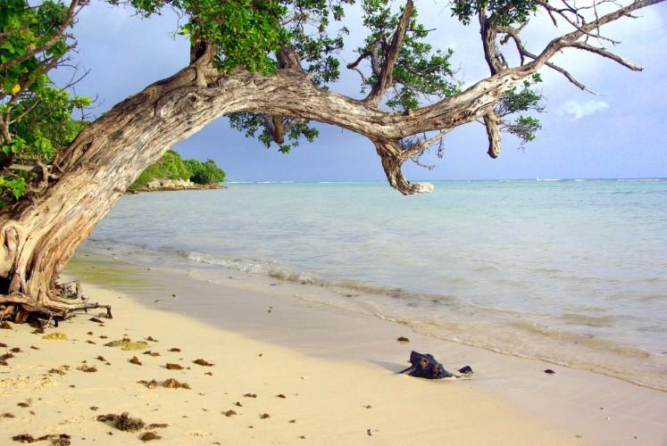 Canyoning en Guadeloupe