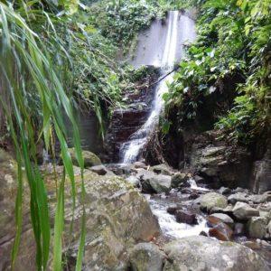 canyoning-Guadeloupe-2